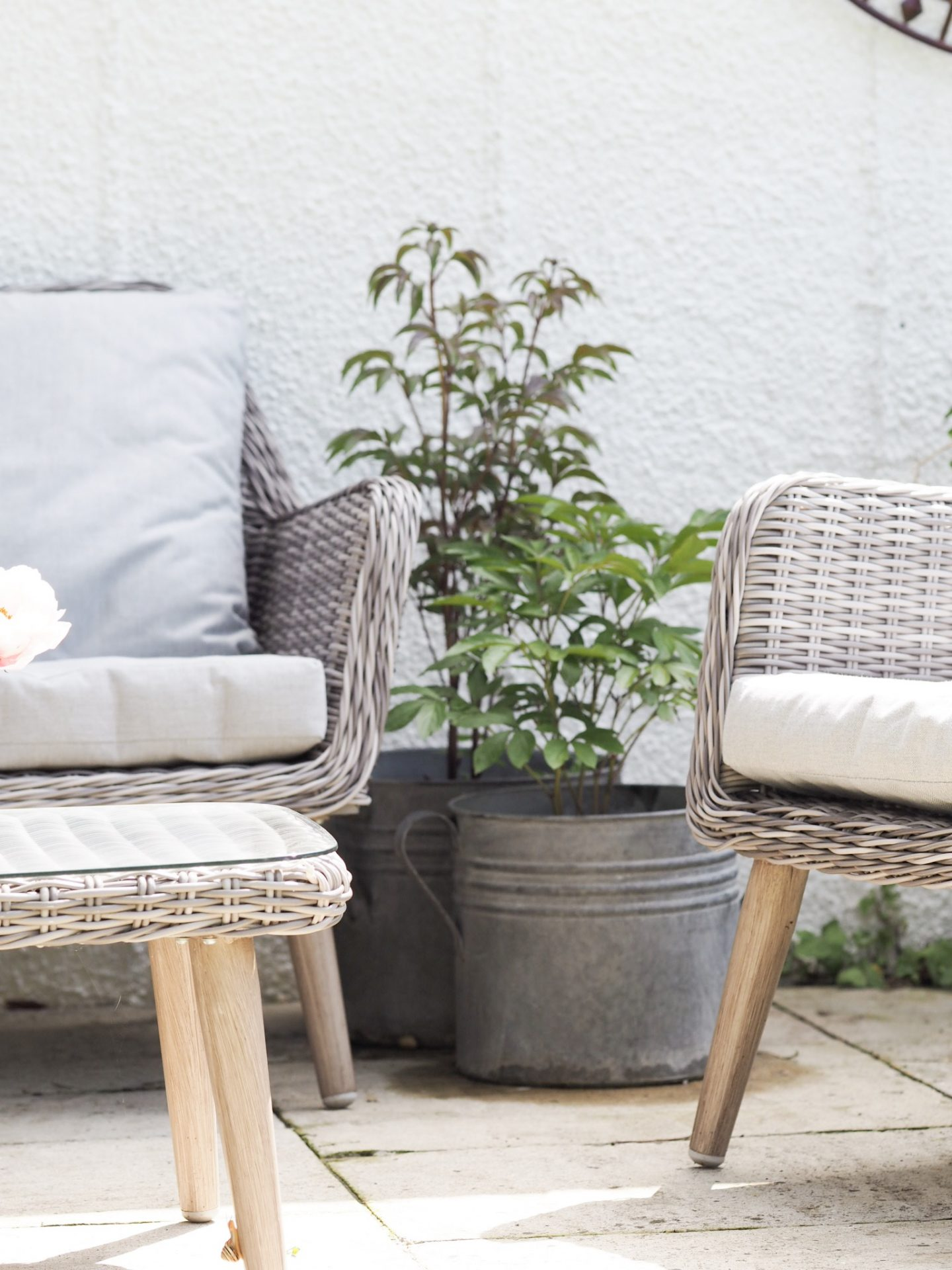 Garden – Tarting It Up